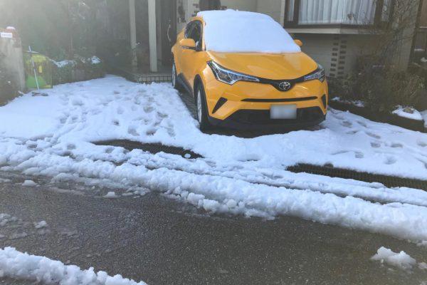 2020/02/18/(火)雪かき・除雪・雪すかし