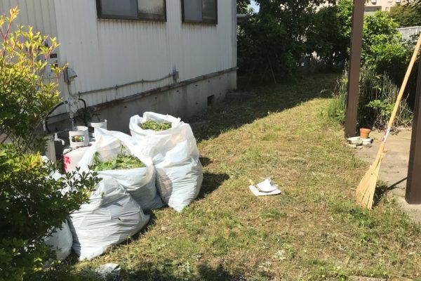 2020/06/8/(月)草刈り